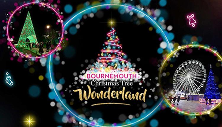 Local event - Christmas Tree Wonderland